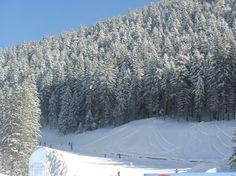 bulgary bansko