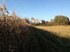Widok na mural na Nowohuckim Centrum Kultury z Łąk Nowohuckich. AudioMural NCK 800 m2 ||| 12 days ||| 17 people ||| Nowa Huta Cultural Center in Cracow, Poland ||| October 2013 #nowahuta #publicart #streetart #krakow #cracow #poland #polska