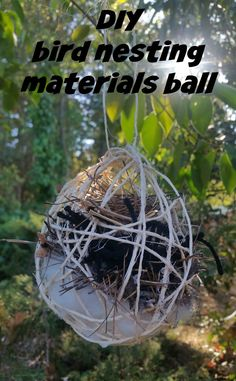 Supply the birds in your area with some nesting materials. You can encourage the birds to build their nests in or around your yard. Supply the birds in your area with some nesting materials. You can encourage the.