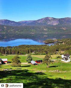 Nydelig! #reiseliv #reisetips #reiseblogger #reiseråd  #Repost @palforsmo (@get_repost)  Nisser i dag tidlig - Nisser early today #visittelemark #bns_norway