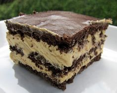 graham crackers, cool whip, peanut butter, vanilla pudding, and chocolate frosting. @Mary Powers Bronsink This looks like peanut butter chocolate eclair!