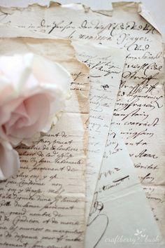 Craftberry Bush: Antique French Script