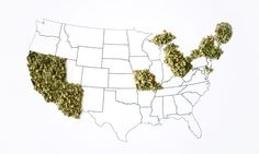 Which states are most likely to legalize recreational cannabis next? Here are our predictions for 2016.