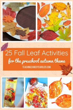 25 Fall Leaf Activities for the Preschool Autumn Theme These 25 preschool fall leaf activities add some seasonal fun to your Autumn time. Add some gorgeous fall colors to your home or classroom! Fall Activities For Toddlers, Seasons Activities, Learning Activities, September Preschool, September Activities, Preschool Themes, Preschool Crafts, Preschool Fall Theme, Preschool Worksheets