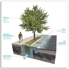 """Receive excellent recommendations on """"rainwater collection architecture"""". They are actually offered for you on our web site. Urban Landscape, Landscape Design, Parque Linear, Urban Design Diagram, Lawn Sprinklers, Rain Garden, Shade Trees, Water Conservation, Urban Planning"""