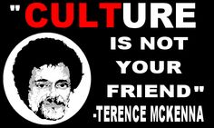 Terence McKenna - Giggling the Google