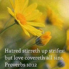 Proverbs 10:12 KJV