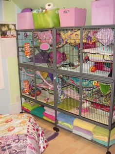 The Ferret Nation has been increasing in popularity as a rat cage lately, I'm… Pet Rat Cages, Rat Cage Diy, Ferret Nation Cage, Ferrets Care, Chinchillas, Sugar Glider Cage, Rat Care, Ferret Supplies, Animales