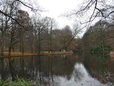 A bit of Berlin - the Tiergarten park in winter