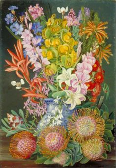 Wild Flowers of Ceres, South Africa - Marianne North