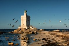 West Coast Tour (3 Days) - Cape Town Tours | The charming lighthouse in Langebaan.