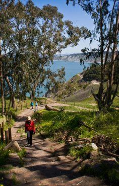 Land's End Trail, Sea Cliff, San Francisco, CA
