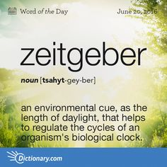 Dictionary.com's Word of the Day - zeitgeber - an environmental cue, as the length of daylight or the degree of temperature, that helps to regulate the cycles of an organism's biological clock.