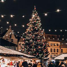 Christmas Collage, Cosy Christmas, Christmas Feeling, Christmas Wonderland, Christmas Background, Christmas Photos, Beautiful Christmas, Christmas Time, Bruges Christmas