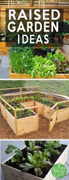 No garden? No space? No problem. Raised garden beds are the perfect way to get the garden you've always wanted without sacrificing too much square footage in your yard. Raised beds are also a good idea for those who may not have the flexibility or energy to constantly be bending over