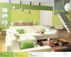 Zielony do salonu