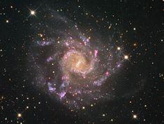 Grand Spiral Galaxy NGC 7424