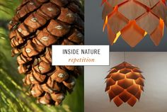 "1: Pine cone photo by Cobalt123  2: Crimean Pinecone Lamp by Pavel Eekra    ""Nature is an endless combination and repetition of a very few laws. She hums the old well-known air through innumerable variations."" - Ralph Waldo Emerson    via: http://blackeiffel.blogspot.com"