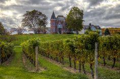 https://flic.kr/p/zvwrJg | Ontario Autumn Wineries