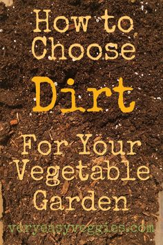 Do your veggie plants struggle in your garden soil? Do you wonder what kind of soil to buy or if you need to buy bags of soil at all? Find out how to choose garden soil to grow vegetables on this site all about vegetable gardening for beginners! Organic Vegetables, Growing Vegetables, Growing Carrots, Growing Tomatoes, Vegetable Garden Soil, Veggie Gardens, Gardening Vegetables, Organic Gardening Tips, Types Of Soil