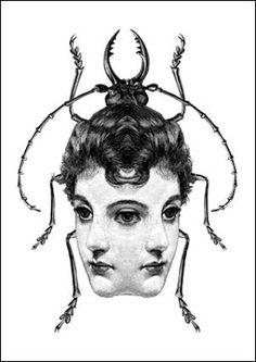 metamorphosis black and white symmetrical female beetle ink illustration Dan Hillier, Metamorphosis Art, Arte Obscura, Occult Art, Art Et Illustration, Arte Horror, Alphonse Mucha, Art Plastique, Graphic
