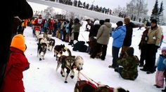 YUKON QUEST: Looking for a fun sporting event? In February, head to Alaska to cheer on mushers and their sled dog teams, as they make their 1,000-mile, 10- to 16-day trek, from Fairbanks, Alaska to Whitehorse, Yukon in Canada. The Yukon Quest Trail follows historical Gold Rush and Mail Delivery dog sled routes from the turn of the 20th Century.  The champion wins a $35,000 purse.