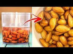 Du hast Nüsse und Samen dein ganzes Leben lang falsch gegessen! - YouTube