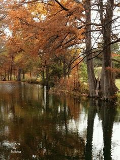 Not sure where this is, but it's in Kerrville, Tx and it's a beautiful fall day in the Texas Hill Country.