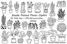 Doodle potted plants clipart, hand drawn plants, Potted Succulent, flower…
