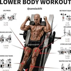 Lower body workout day