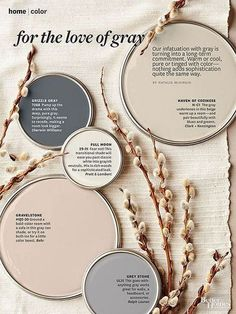 The Best Time To Choose A Paint Color