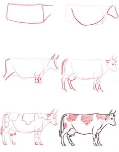 Learn to draw: Cow