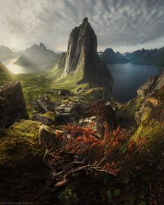 Sometimes it's hard to believe that places like this are even exist on Earth. That's epic Segla mountain. You could plan your vacation to Northern Norway straight away just to see this iconic mountain! Fantasy Landscape, Landscape Photos, Landscape Photography, Nature Photography, Travel Photography, Photography Tips, Abstract Landscape, Beautiful World, Beautiful Places