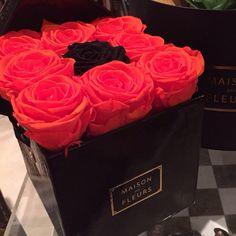 Unique ♡ Maison Des Fleurs UAE