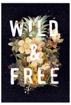 Wil n free
