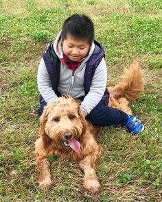 雨が止んでるうちに、大好きな親分と走り回って、ご機嫌である😊🐶💕 #goldendoodlelove  #f1goldendoodle  #doodle  #doodlelove  #doodlelife  #doodlegram  #instadoodle  #instadoodles  #instadog  #inutokyo  #dog  #dogstagram  #ゴールデンドゥードル  #愛犬 #mydog  #犬は裏切らない  #inulog  #犬  #大型犬のいる生活 #goldendoodle  #west_dog_japan #bestfriends_dogs #doodletales #houzzofdogs #犬 #mydog #doggy  #doglover  #doglife #goldendoodle #la_dog  #inutokyo  #犬と子供