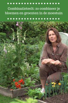 Herb Garden, Garden Plants, Gardening Vegetables, Coffee With Friends, Ecology, Herbs, Backyard, Nature, Flowers