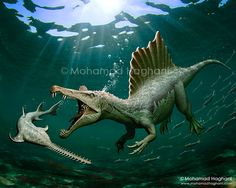 Spinosaurus Vs Onchopristis. 2D Digital Painting, 2015. Client: (World of Dinosaurs) Dinosaur Encyclopedia for Phone and Tablet App. available for ios and android.