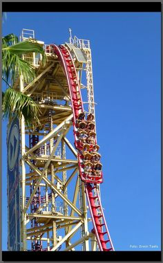 Hollywood Rip Ride Rockit - best ride!