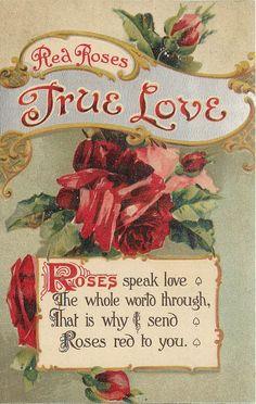 Vintage Postcard Language of Flowers Red Roses True Love | eBay