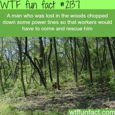 What to do when you're lost in the woods - WTF fun facts I'll remember this!