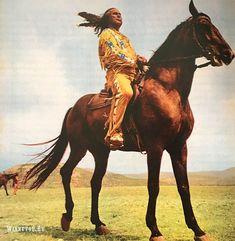 Мари Версини: «Я была сестрой Виннету» | Winnetou.Ru Horses, Animals, Animales, Animaux, Animal, Animais, Horse