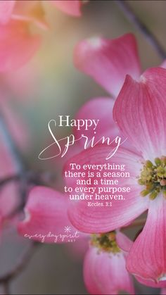 Spring · Springtime QuotesSpring Quotes FlowersSpring ...