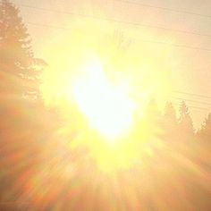 #GOLDEN #ORANGE  #SUN #BURSTING  #RAINBOW #EGGS  of the #FIERY #FENIX  #PHOENIX #REBIRTHING  <3 ke ke................