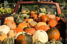 Truck full o' pumpkins at the Fayetteville Farmer's Market.