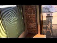 敷金礼金なし0ヶ月1部屋お申込み済!!ついに新プロジェクト登場!!秦野市渋沢駅の女子学生専用インターネット使い放題シェアハウス「リアンジュ」Liange(東海大学湘南キャンパス・上智短大・神奈川大学平塚キャンパス)賃貸アパート)|秦野市東海大学前駅の不動産会社松屋不動産二代目社長のつれづれ日記