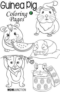 This lovely Guinea pig wearing a hat coloring page is so
