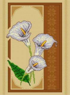 Zantedeschia (bunch of flowers, plant, flower)
