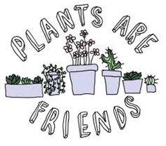 тамблер рисунки растений - Поиск в Google