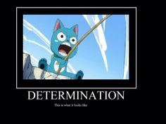 DETERMINATION (Fairy Tail cx)